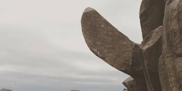 kasztrálás és felállítás mit kell tenni a pénisz megvastagításáért