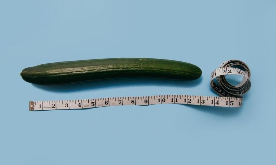 a pénisz átlagos hossza és vastagsága